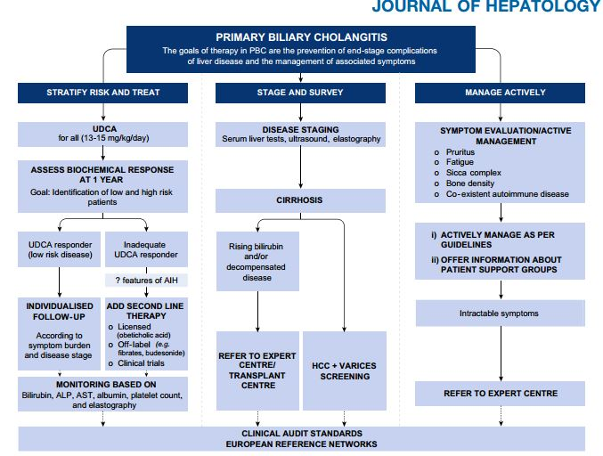 New European Guidelines for PBC Diagnosis and Treatment