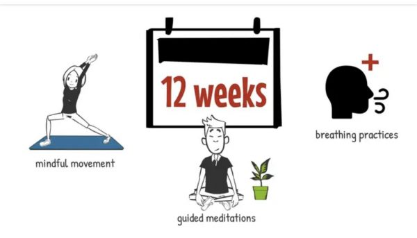 PBC 12 week Wellness Program – Pre-registration now open